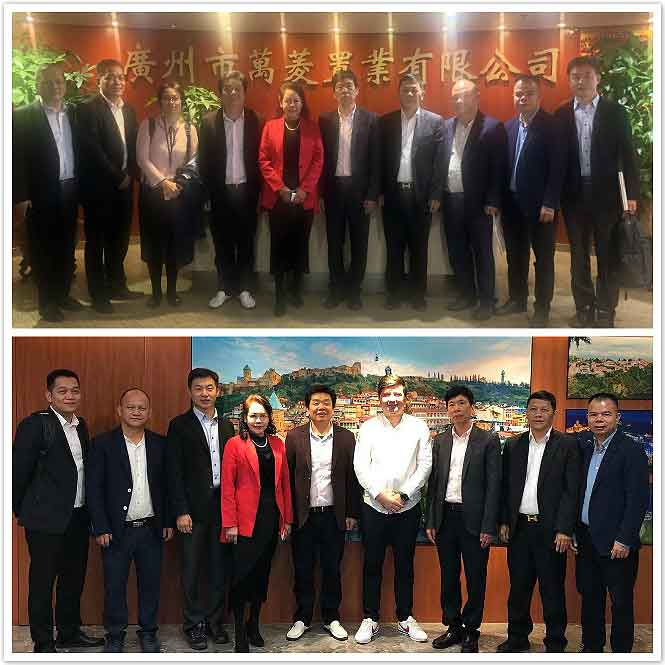 A delegation from Kenya Guangdong Chamber of Commerce visited Wanling square